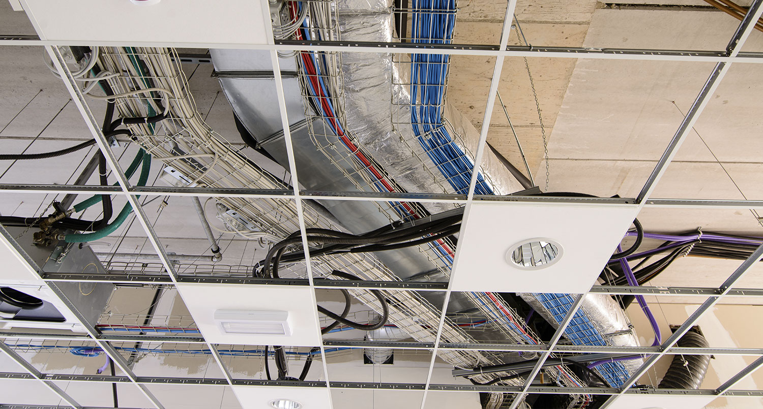 California Electrician License Lookup Electricians List